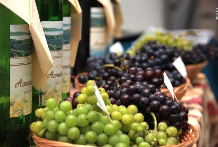 С вином ферма