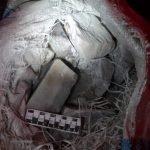 В Алтайском крае пресекли попытку вывоза за границу 20 тонн нефрита