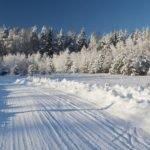 Тепло и солнечно. О погоде в Алтайском крае 23 декабря