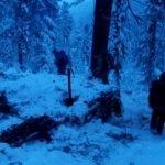 В Алтайском заповеднике поймали группу браконьеров