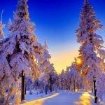 Погода 24 декабря в Алтайском крае: снег, метель, ветер