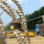 На экспорт отправлено более 350 тысяч тонн продукции АПК Новосибирской области
