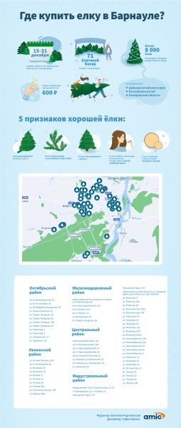 Где купить настоящую елку на Новый год в Барнауле и как ее выбирать. Инфографика