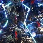В Барнауле стартовали новогодние представления для школьников