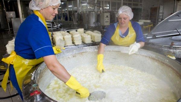Кооперативный молзавод наАлтае вразы увеличил мощности для выпуска новых сыров