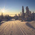 В минтрансе Алтайского края рассказали об обстановке на дорогах в регионе