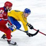 Кузбасс подал заявку на проведение Кубка мира-2021 по хоккею с мячом