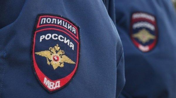 Двое пьяных дебоширов напали на полицейских в Новосибирске