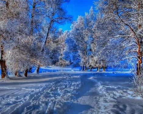 Погода 28 января в Алтайском крае: снег, ветер, метели