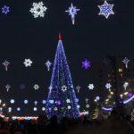 Сколько простоит главная городская елка наплощади Сахарова вБарнауле