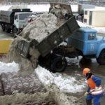 Инвестор предложил властям Барнаула установить станции по плавлению снега