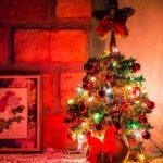 ВБарнауле новогодние елки отправят накорм лошадям