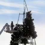 Как разбирают елку наплощади Сахарова: фоторепортаж altapress.ru