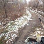 На Алтае возле железной дороги обнаружили труп мужчины
