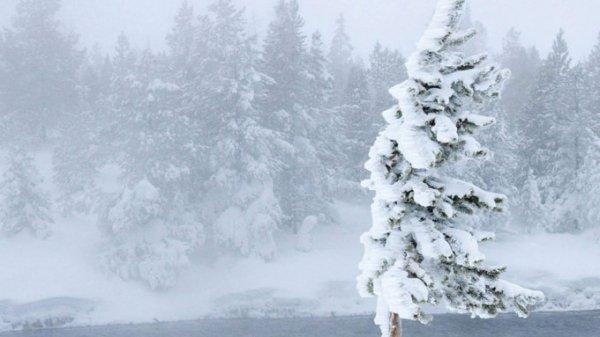 Возможен сильный ветер. О погоде в Алтайском крае 15 января