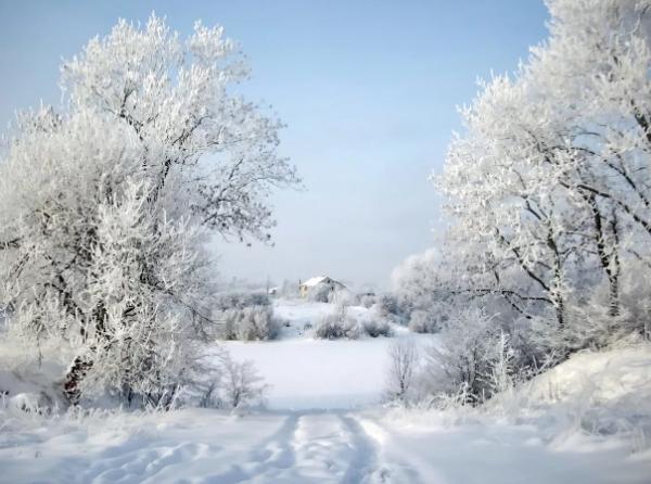 Погода 22 января в Алтайском крае: ухудшение погоды в регионе