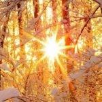 Зима без сюрпризов. О погоде в Алтайском крае 13 января
