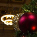 В Барнауле начали принимать новогодние елки на переработку