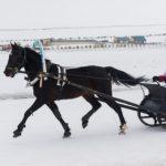 ВАлтайском крае из-за убытков закрывается крупнейшая турплощадка