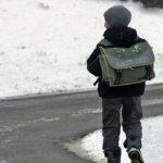 СК проверит перевозчика, высадившего ребенка у аэропорта Барнаула