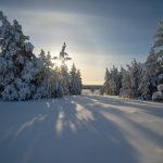 Погода 1 января в Алтайском крае: небольшой снег и до -19 градусов