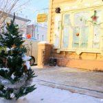 Где сдать елку в Барнауле
