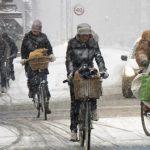 Мэрия Барнаула в день выборов градоначальника просит пересесть на велосипеды