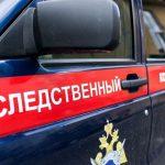 Житель Бийска обвиняется в убийстве месячного сына
