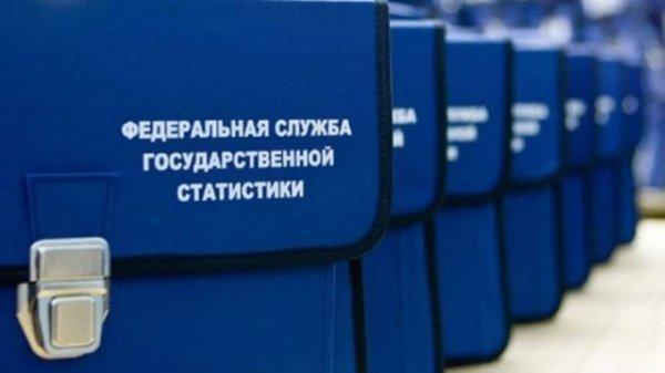 Коронавирус поставил под угрозу российскую перепись населения