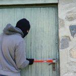 Какие виды краж чаще всего совершают в Новосибирской области