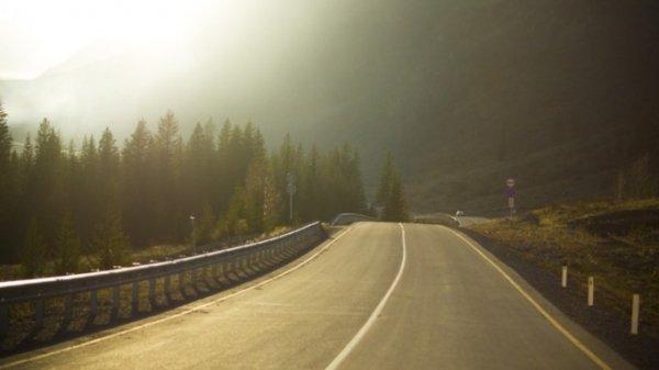Алтайский край занял 31 место в рейтинге регионов по аварийности на дорогах