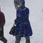 Зима вернется в Алтайский край на следующей неделе