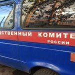 На Алтае несовершеннолетний избил мужчину деревянной палкой