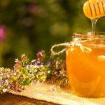 Молодость и долголетие: почему алтайский мёд покупают в Москве и Краснодаре