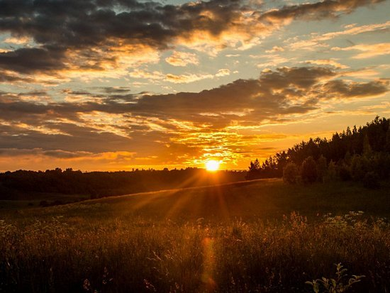 Главные тренды уходящего лета на Avito в Барнауле