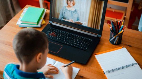 Урок в соседней комнате: что думают барнаульские родители об онлайн-образовании