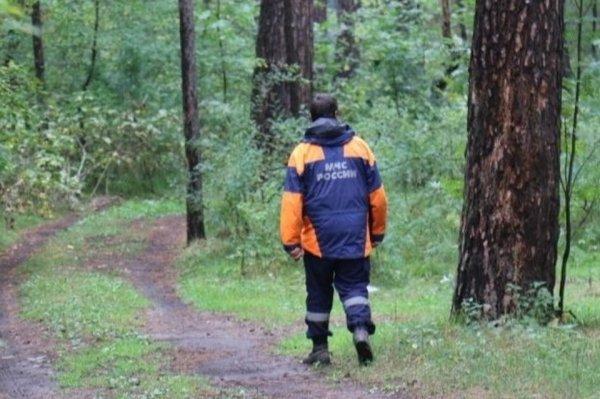 30 человек искали пропавшую пенсионерку в пригороде Барнаула