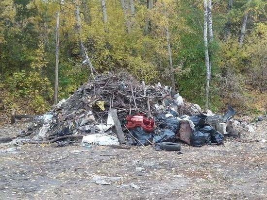 40 мешков мусора вывезли с берега Пивоварки в Барнауле