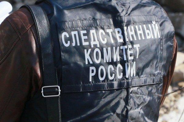 Почти 20 лет колонии получил педофил из Республики Алтай