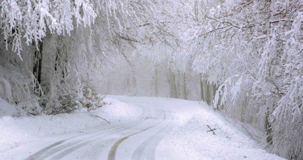Синоптики рассказали, какой будет зима в Алтайском крае