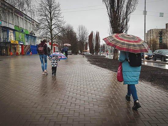 В Алтайском крае ожидают ветреную и дождливую погоду