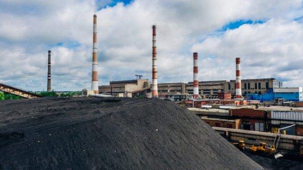 В каких районах Алтайского края могут возникнуть проблемы с углем