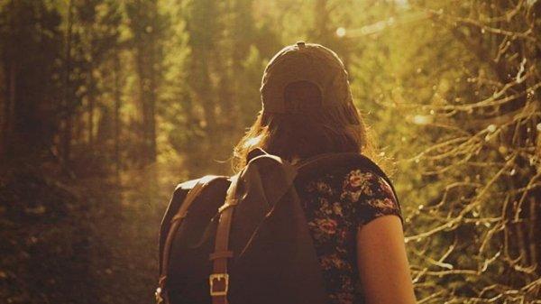 Алтайский край вошёл в список самых популярных регионов для путешествий в ноябре