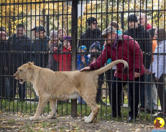 Пенсионеры смогут посетить зоопарк бесплатно
