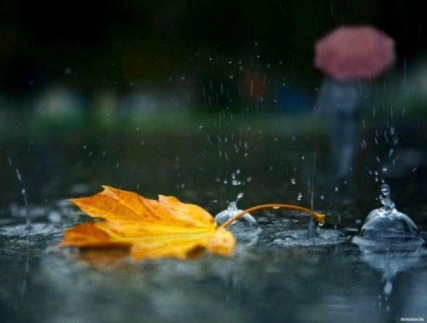 Погода 30 сентября в Алтайском крае: дожди с мокрым снегом и похолодание