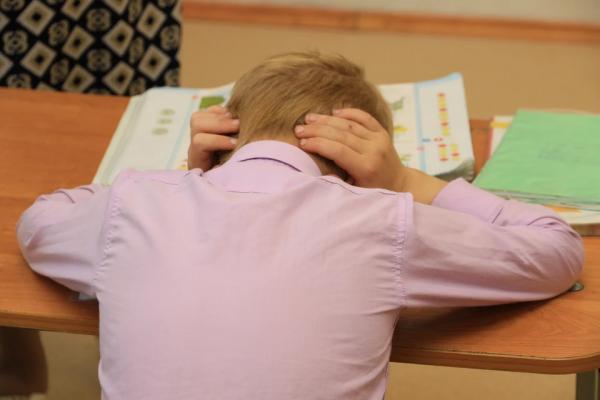 Родители барнаульских школьников пожаловались на нехватку учебников