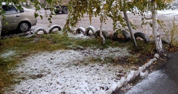 Рубцовчане делятся в соцсетях фотографиями первого снега
