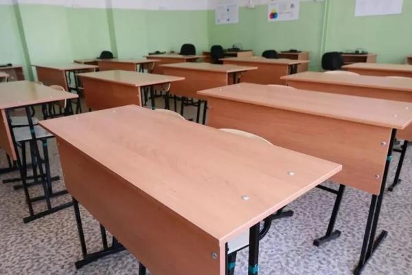 Сколько алтайских школ и классов перешли на удаленку из-за ОРВИ и коронавируса