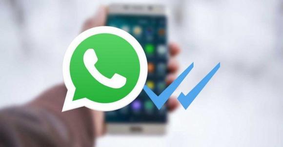 В поликлинике №14 теперь можно вызвать врача по WhatsApp
