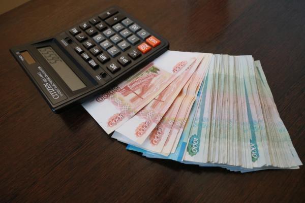 За счет чего пополняется бюджет Алтайского края и сколько уходит на зарплаты чиновников